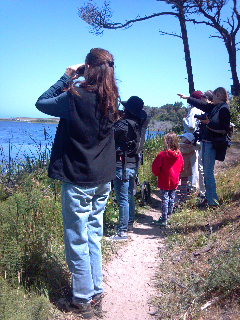 MCAS Education with your birders